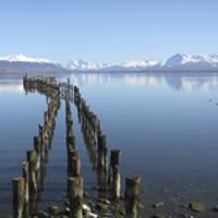 hello patagonia puerto natales