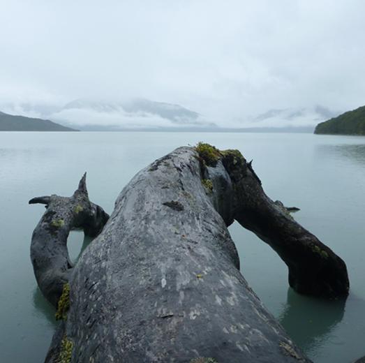 hello-patagonia-balmaceda-ultima-esperanza-fiord